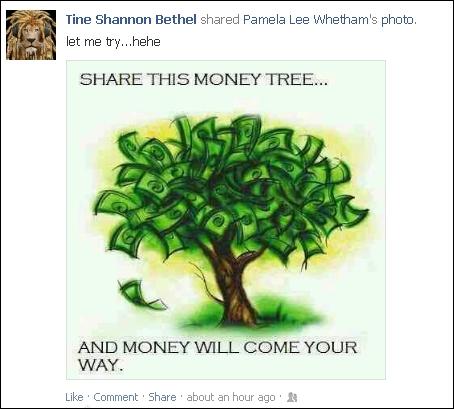 FB 151212 Shannon