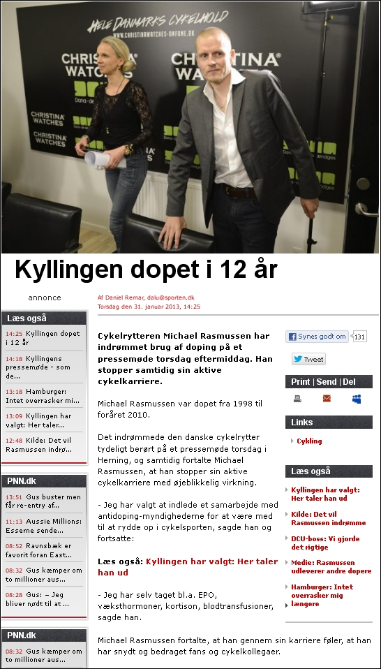 BT 310113 Kylling