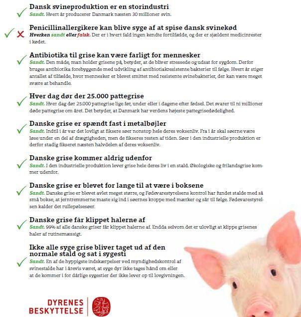 Dansk svineproduktion