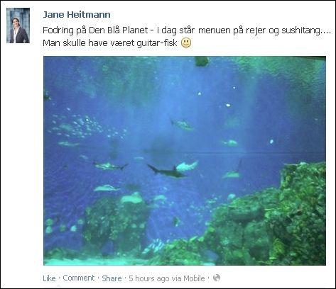 FB 171013 Jane