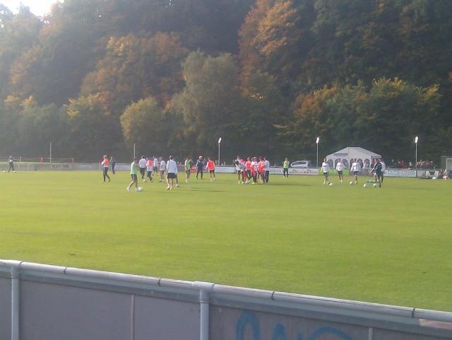 Morten Olsen & co training 081013
