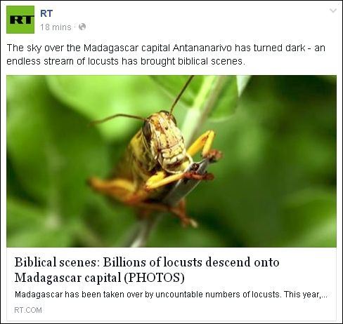 FB 020914 RT locusts