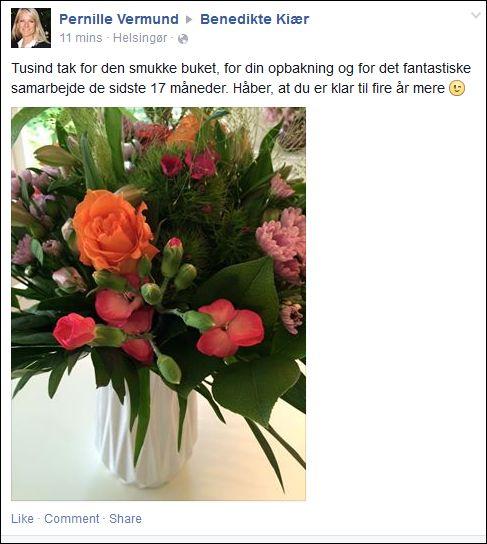 FB 240615 Pernille V 2