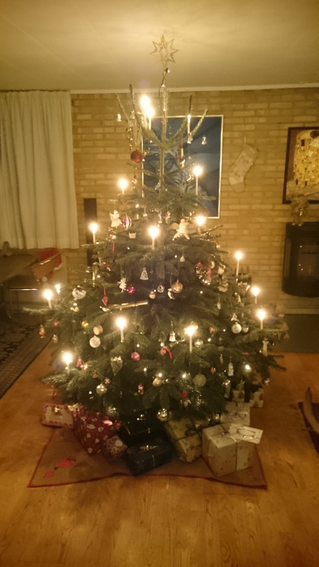christmas-evening-at-sanna-and-hans-241216
