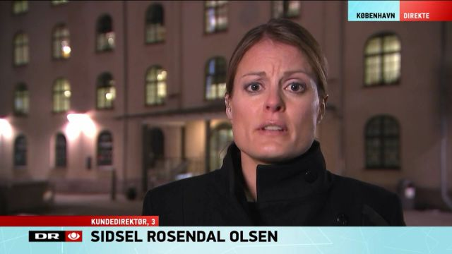 sidsel-on-dr-tv-news-130217